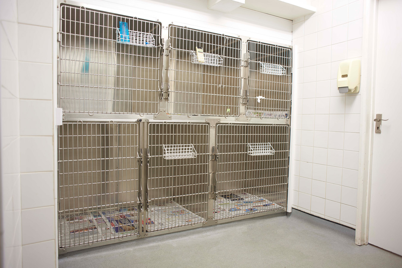 Riverside Vets Facilities - Air Conditioned Kennels