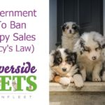 Guv to Ban Puppy Sales