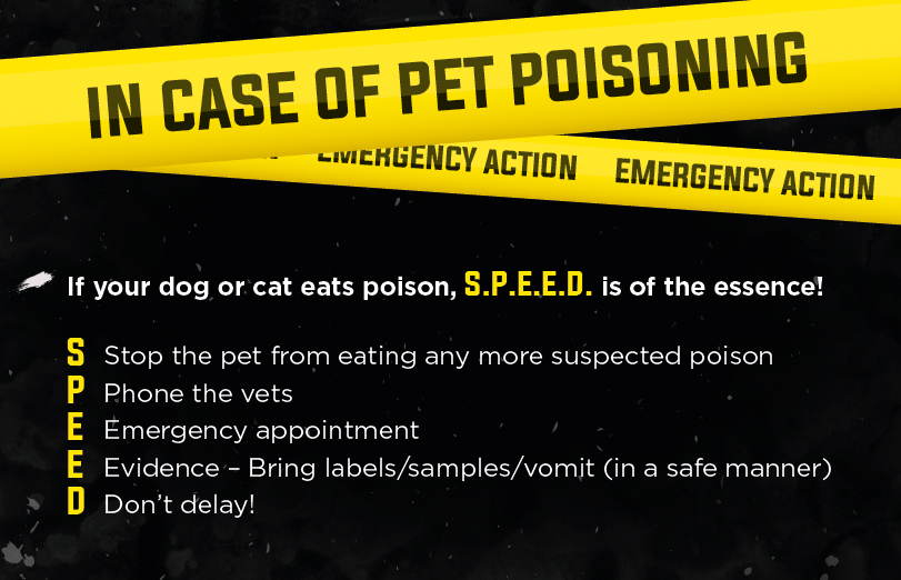 In case of Pet poisonning